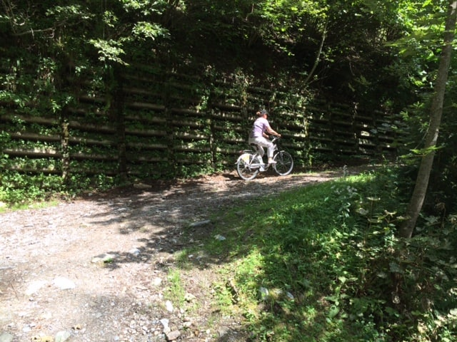 el e bike