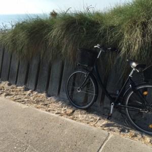 Nordsee un Fahrrad gehören zusammen